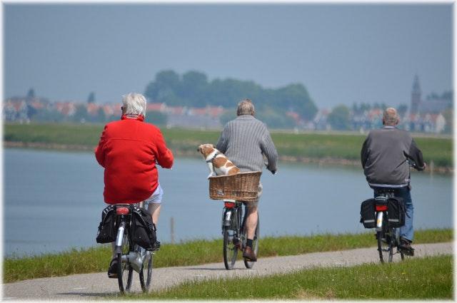 Seniors à bicyclette dans la nature.