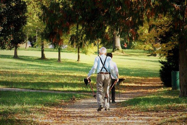 Personnes âgées marchant dans un parc.